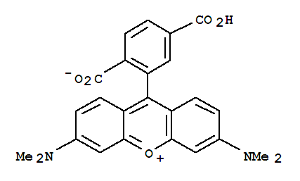 6-Carboxytetramethylrhodamine