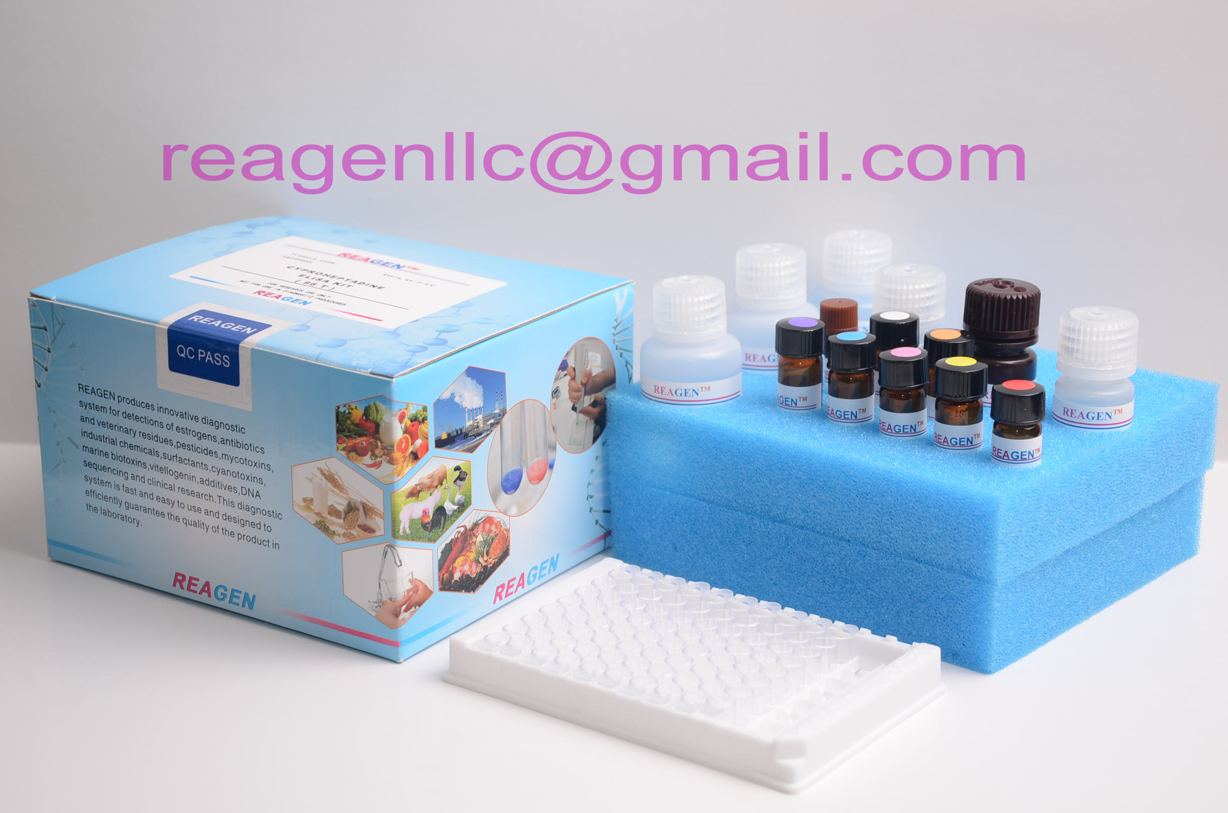 REAGEN Ascorbic Acid Assay Kit(96T)
